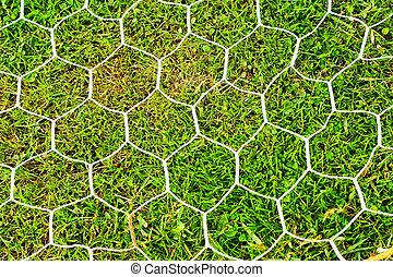 Goal football on green grass.