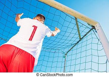 Goalkeeper in the Goal