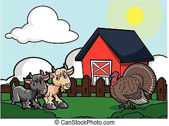 goat, そして, トルコ, 鳥, 農場