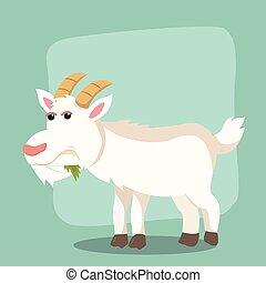goat eating leaf