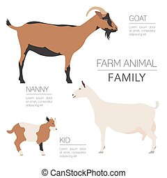 Goat farming infographic template. Animall family. Flat...