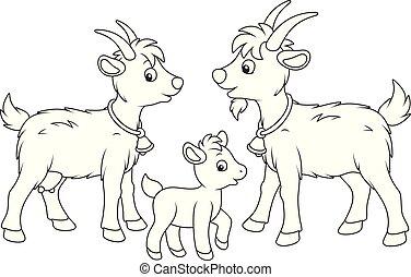 goat, he-goat, 子供
