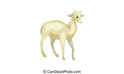 Goat icon animation best on white background for any design