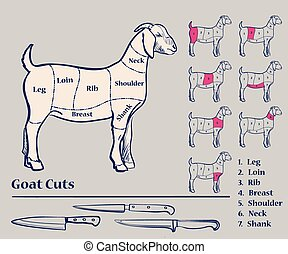 Goat meat cuts, Diagram, excellent vector illustration, EPS...
