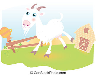 Goat on farm