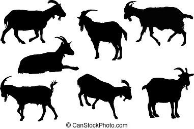 Goat silhouette collection. Rural farm animals on a white...