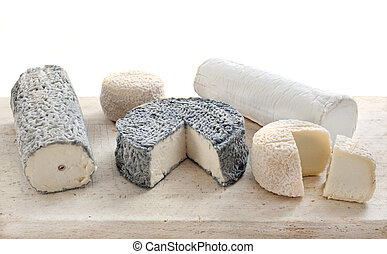goat's cheese in studio