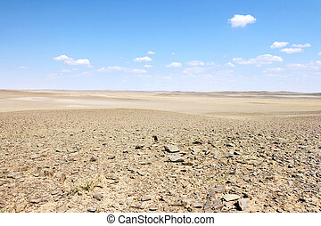 gobi の砂漠