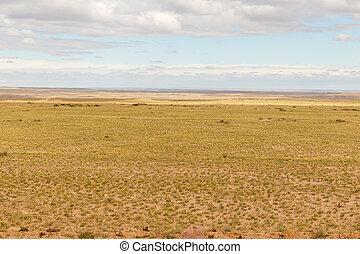 gobi, mongolian, 風景, 砂漠