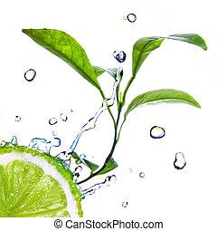 gocce acqua, su, calce, con, congedi verdi, isolato, bianco