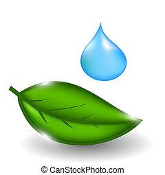 goccia, leaves., illustrazione, acqua, vettore, verde