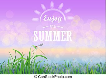 godere, estate, natura, testo, sky., vacanze, fondo., bokeh, verde, primavera, floreale, tramonto, erba