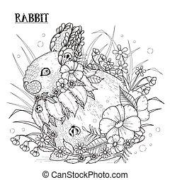 godny podziwu, królik