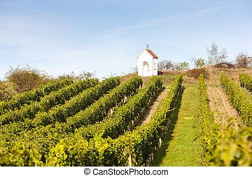 God''s torture near Hnanice with vineyard, Southern Moravia,...