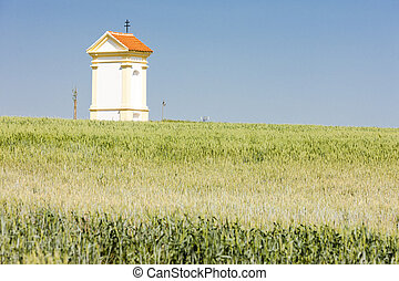 God''s torture with grain, Southern Moravia, Czech Republic