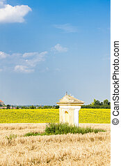 God''s torture with sunflower field, Southern Moravia, Czech Rep