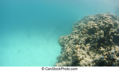 Going around the coral reefs