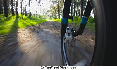 Going by Bike in the forest. Low Angle View - Going by Bike...