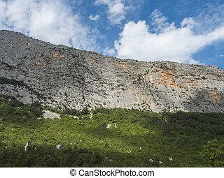 gola, sardegna, escursione, giorno pieno sole, monte, oddeu, faccia, do, mediterraneo, estate, gorropu, gola, supramonte, italy., montagne, vista, nuoro, roccia, calcare, vegetazione