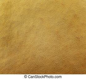 gold brown hardcover book, paper texture