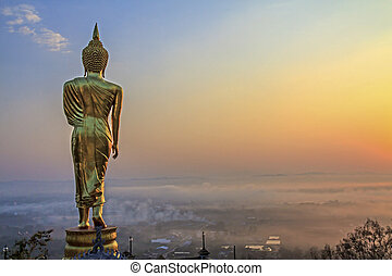gold buddha with field