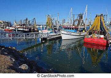 Gold Coast Fishermen's Co -Queensland Australia - GOLD COAST...