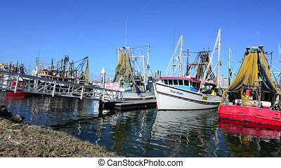 Gold Coast Fishermens Co Queensland - Fishing trawlers...