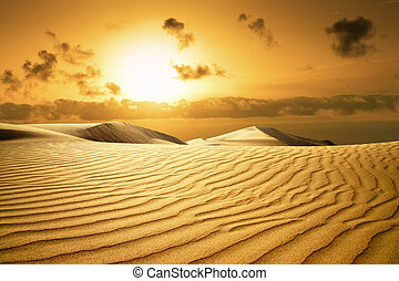 Gold desert in sunset. Canary Islands, Canaries. Grand Canary. Maspalomas, Resort Town.