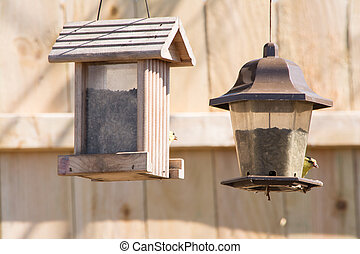 gold finches on feeder