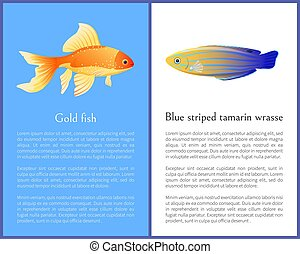 Gold Fish and Blue Striped Tamarin Wrasse Icons - Gold fish ...