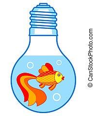Gold fish in lamp