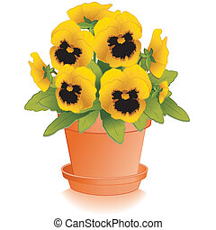 Gold Pansy flowers (Viola tricolor hortensis) in clay flowerpot, isolated on white background. EPS8 compatible.