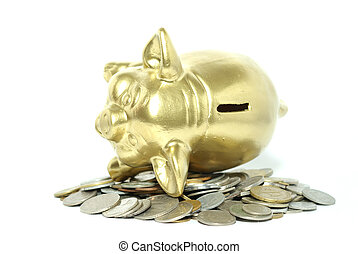 piggy bank isolated on white background with coins