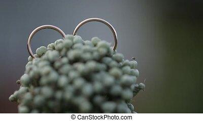 Gold Rings macro Wedding on the flower closeup shoot diamon...