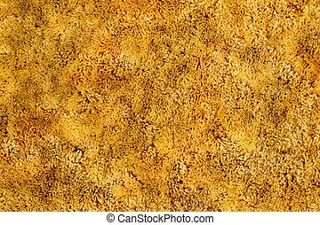 Gold Shag Carpet