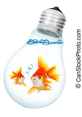Gold small fish in light bulb on a white background