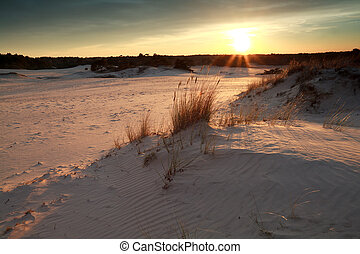 gold sunset over sand dunes