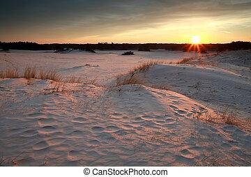 gold warm sunset over sand dunes