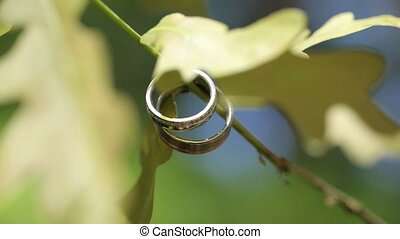 Gold Wedding Rings macro closeup shoot diamon Jewellery -...