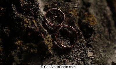 Gold Wedding Rings on the tree macro closeup shoot diamon...