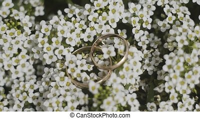 Gold wedding rings on white flowers.