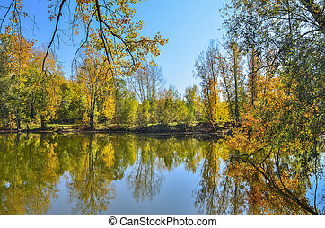 Golden autumn on lakeside - picturesque fall landscape near lake