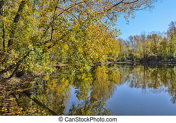 Golden autumn on lakeside - picturesque fall landscape near lake