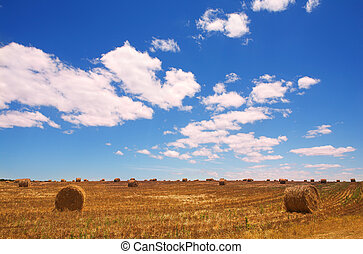 Golden bales of hay on the lands