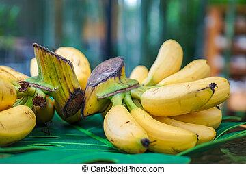 golden banana on the artificical banana leaf at outdoor in garden.