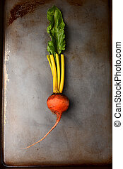 A single golden beet on a metal cooking sheet. Vertical format.