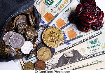 golden bitcoin coin over dollars and wallet with international coins and money toad. close up