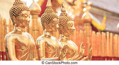 Golden Buddha in Temple Chiang Mai Asia Thailand