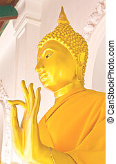 Golden buddha in the temple