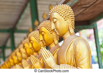 Golden Buddha statue in Thaland temple